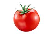 עגבניה פרימיום