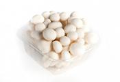 פטריות שימג'י לבן - מרינה