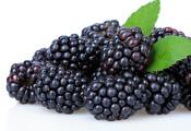 מיקס פירות יער קפואים - 2 ק